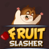 Fruit Slasher