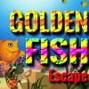 XG GOLDEN FISH ESCAPE